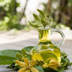 tinh dầu ngọc lan nguyên chất
